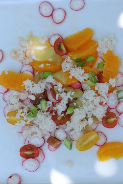 Salade de crabe aux agrumes - Crab salad with oranges and limes -  Vanessa Romano-Photographe et styliste culinaire- (2)