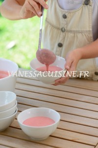 Crème de fraise de Baga - Baga's Strawberry cream  - Vanessa Romano-Photographe et styliste culinaire- (7)