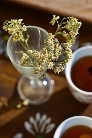 Thé vert aux épices douces et agrumes - Green tea with sweet spices - Vanessa Romano photographe et styliste culinaire (3)