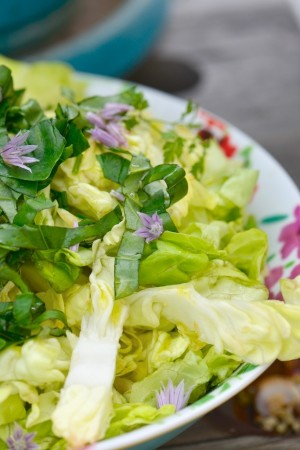 Salade aux herbes du jardin  - Lettuce with fresh herbs from the garden -  Vanessa Romano photographe et styliste culinaire (2)