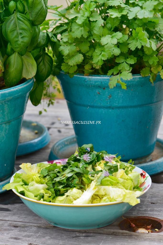 Salade aux herbes du jardin  - Lettuce with fresh herbs from the garden -  Vanessa Romano photographe et styliste culinaire