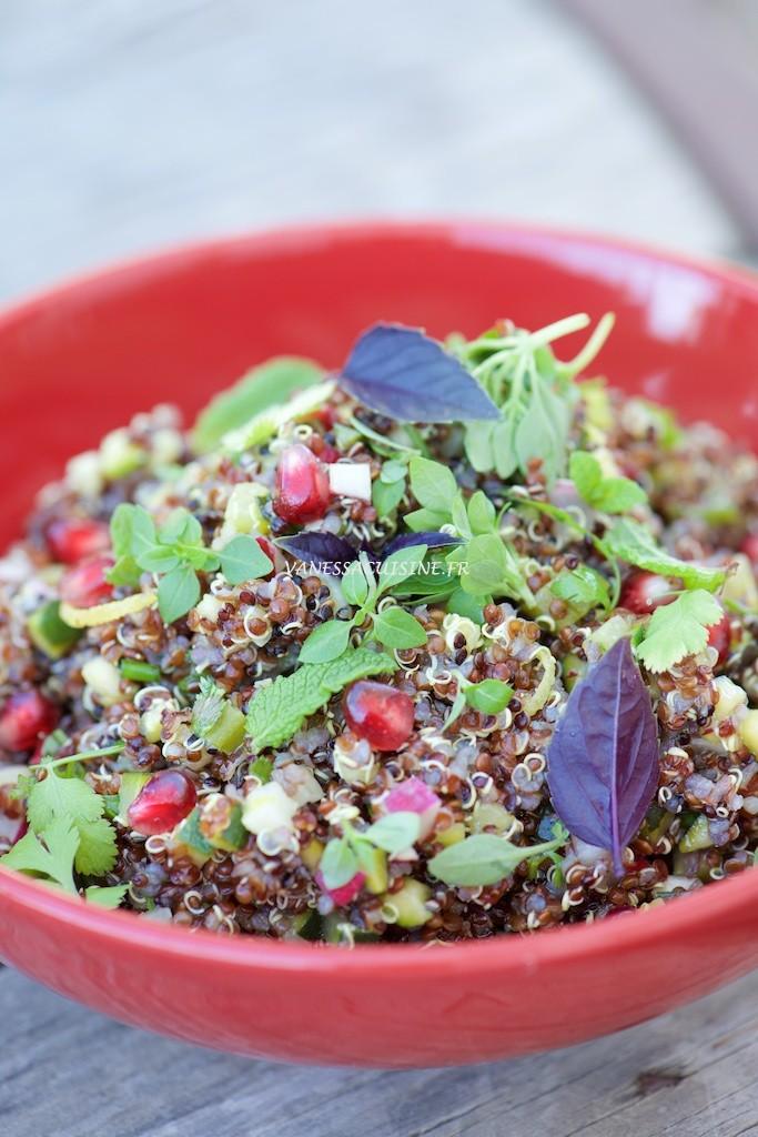 Salade de quinoa rouge et noir, légumes et plein d'herbes ! - Vanessa Romano photographe et styliste culinaire